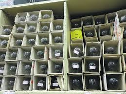 Venda de lâmpadas incandescentes está proibida no país