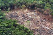 Retrocesso ambiental deve pôr Brasil em saia-justa na Europa
