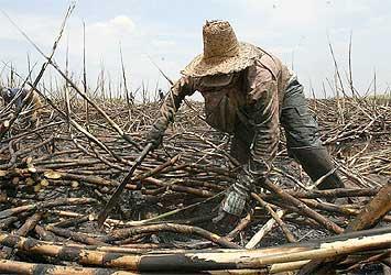 Parlamentares reagem a mudanças na caracterização do trabalho análogo à escravidão
