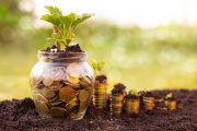 Projeto susta decreto que converteu multa ambiental em investimentos