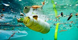 A enzima comedora de plástico que pode revolucionar processo de reciclagem