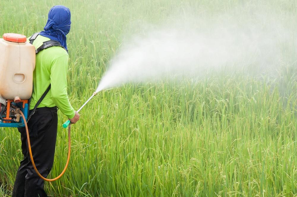 Mudanças na lei de agrotóxicos no Brasil violariam direitos humanos, afirmam relatores da ONU
