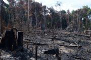 Brasil avança, mas tem desafio para cumprir meta de emissão de carbono