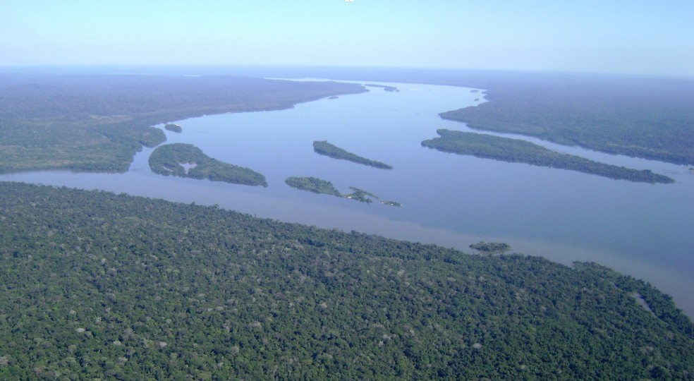 Manifesto assinado por 600 cientistas pede que Europa pare de 'importar desmatamento' do Brasil