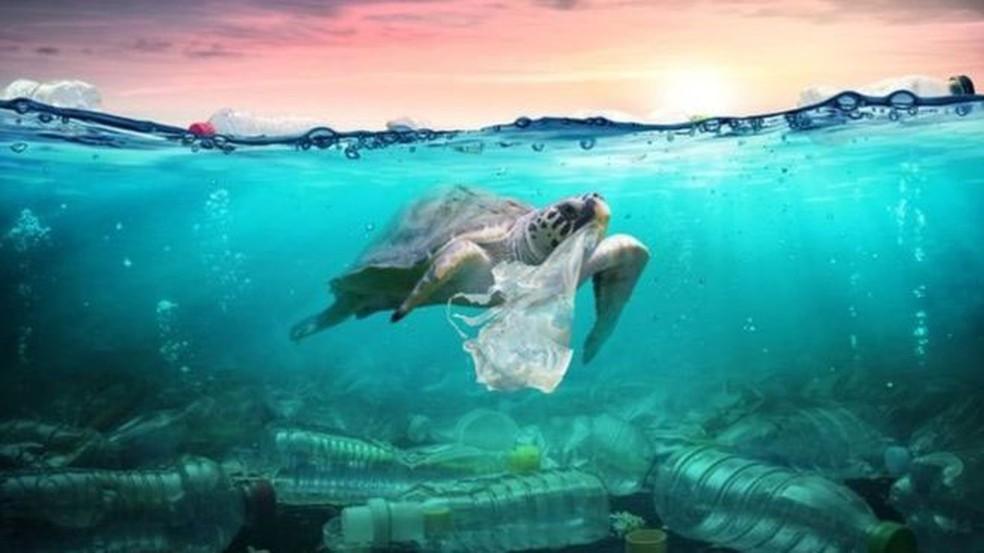 A Era do Plástico: o uso do material pode marcar o inicio do Antropoceno?