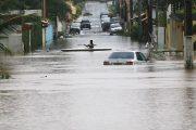 Enchentes no sudeste: governos precisam colocar políticas públicas em prática, diz Greenpeace
