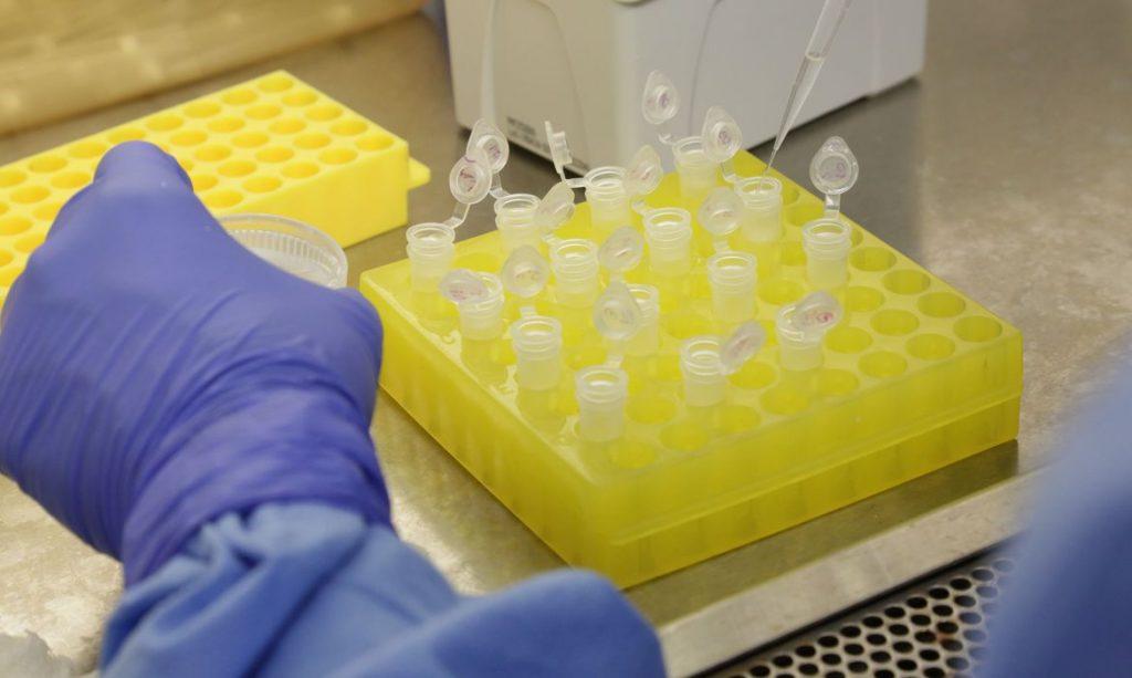 Ciência, tecnologia e inovação são essenciais para América Latina enfrentar pandemia