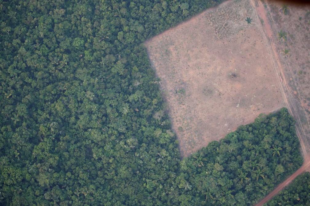 Mudanças recentes no clima causadas pelo homem não têm precedentes, aponta relatório da ONU
